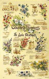 3998-1161 - Country Flowers of the Lake District Tea Towel